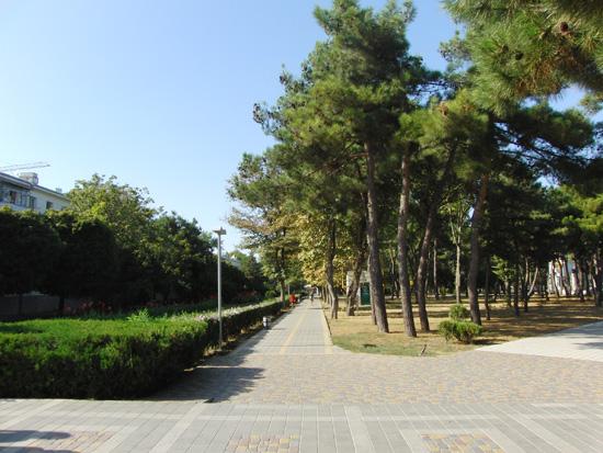 Улица Владимирская города-курорта Анапа