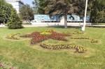 Клумба возле здания администрации Анапы